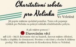 Charitativní sobota pro Nelinku