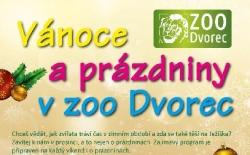 Vánoce a prázdniny v zoo Dvorec